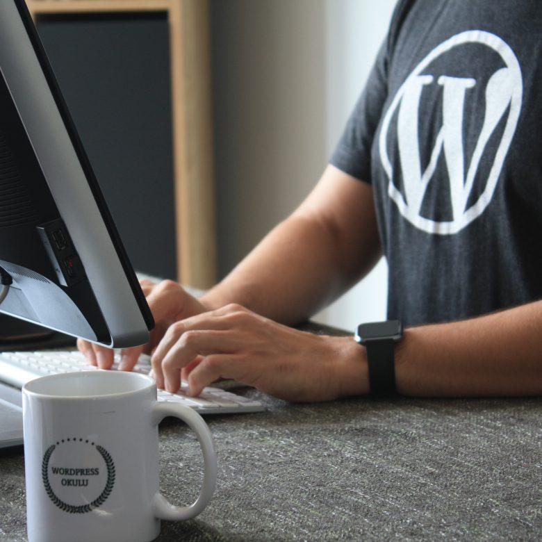 Agence de développement wordpress